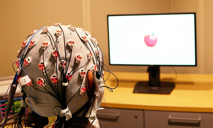 Dubai Police crack murder case using Brain fingerprint technology
